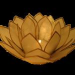 Lotus Met 3 Bloemkransen